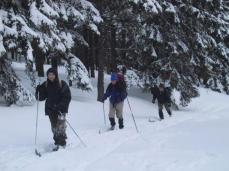 Rajd Zimowy Góry Izerskie 2004